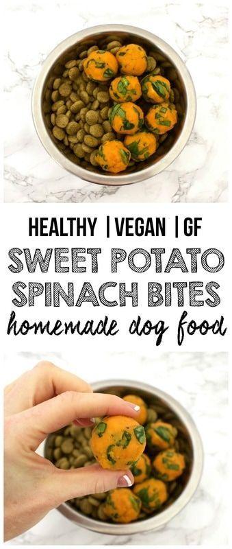 Healthy homemade dog food sweet potato spinach bites vegan healthy homemade dog food sweet potato spinach bites vegan gluten forumfinder Gallery