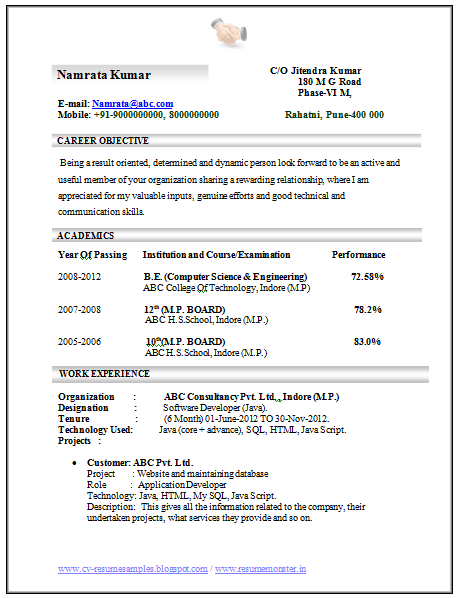 professional curriculum vitae resume template for all job seekers sample template of an excellent computer - Sample Resume For Job Seekers