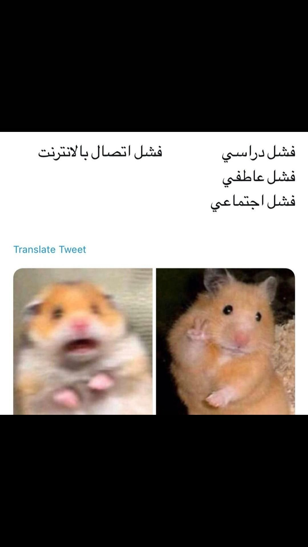 Pin By 11 On استهبال Funny Comments Arabic Funny Funny Picture Jokes