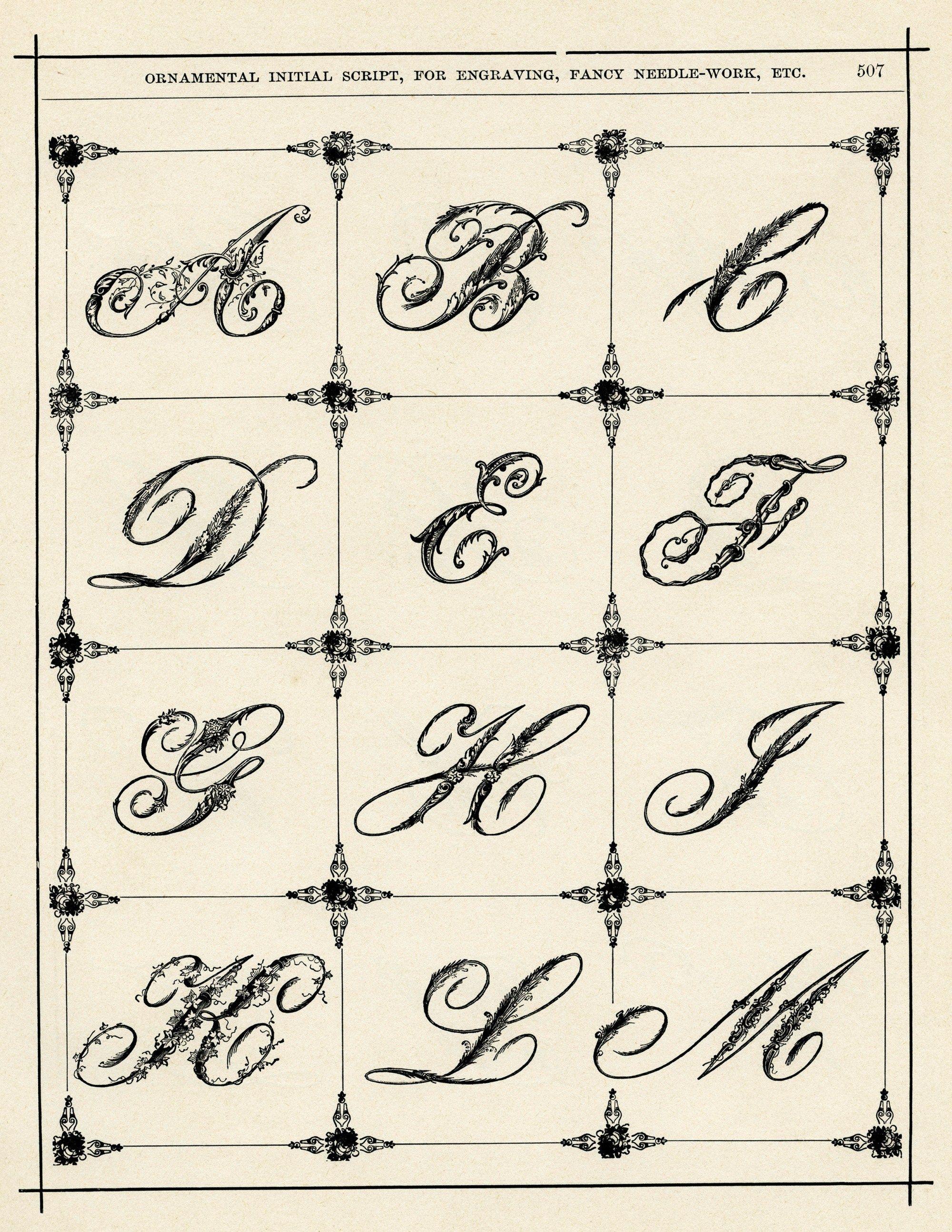 Ornamental Typography Vintage Alphabet Fancy Alphabet
