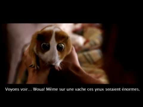 """""""Globule"""" the french name of that piggy in a Disney Movie called in french """" Histoires enchantées"""" ^~^ .. .."""