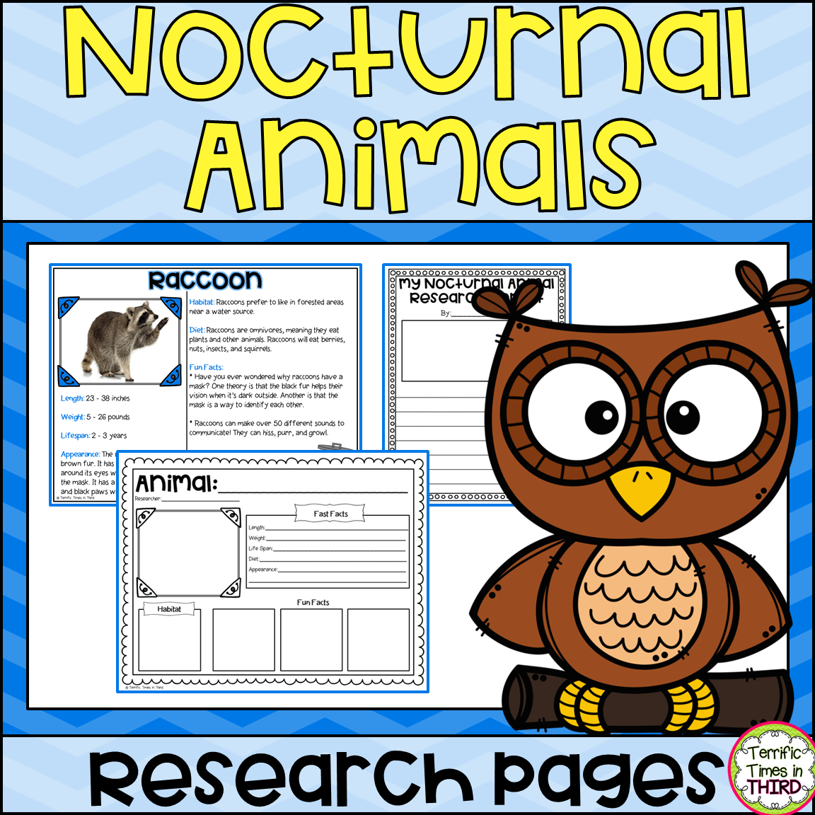 Nocturnal Animals Research Pages Read And Write About 9