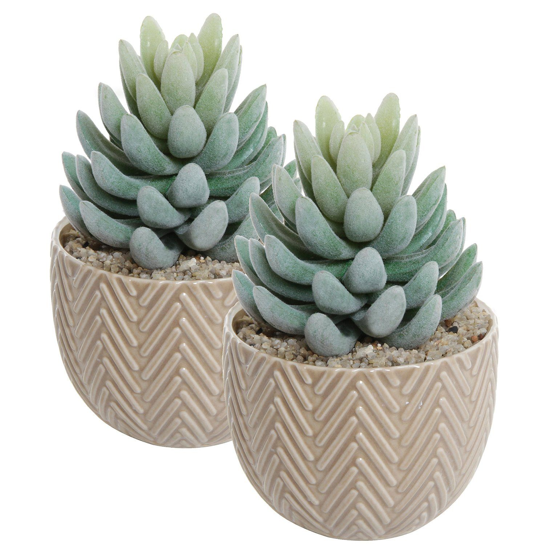 Amazon Com Set Of 2 Small Decorative Beige Ceramic 400 x 300