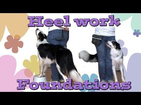 Dog Training Clicker Dog Training Pam S Dog Academy Www