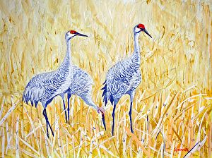Sandhill Cranes-3-Golden Grains-2015-JES by Jim Springett in the FASO Daily Art Show