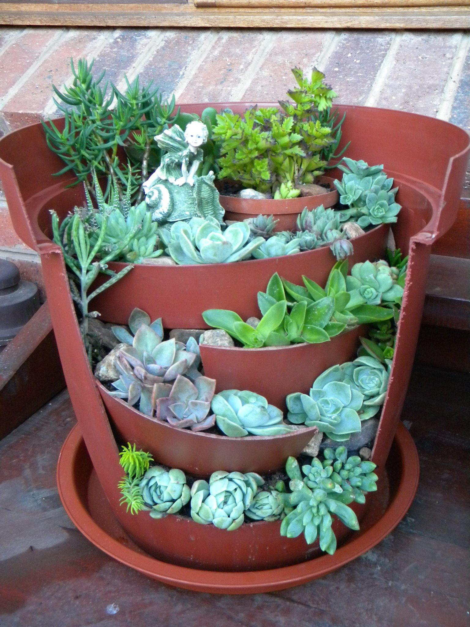 a tiered Succulent fairy garden, done in a plastic or ceramic flower pot.