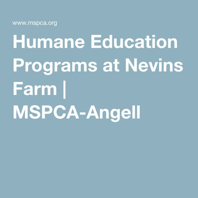Humane Education Programs at Nevins Farm | MSPCA-Angell
