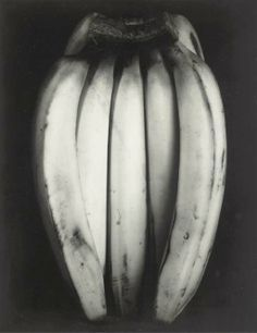 Edward Weston, Bananas, 1930.