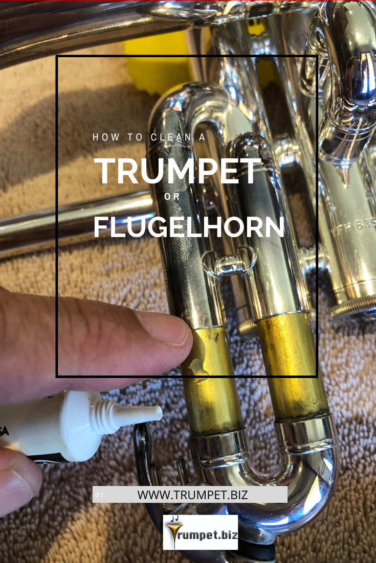 How To Clean A Trumpet Or Flugelhorn In 2020 Trumpet Cleaning Professional Trumpet