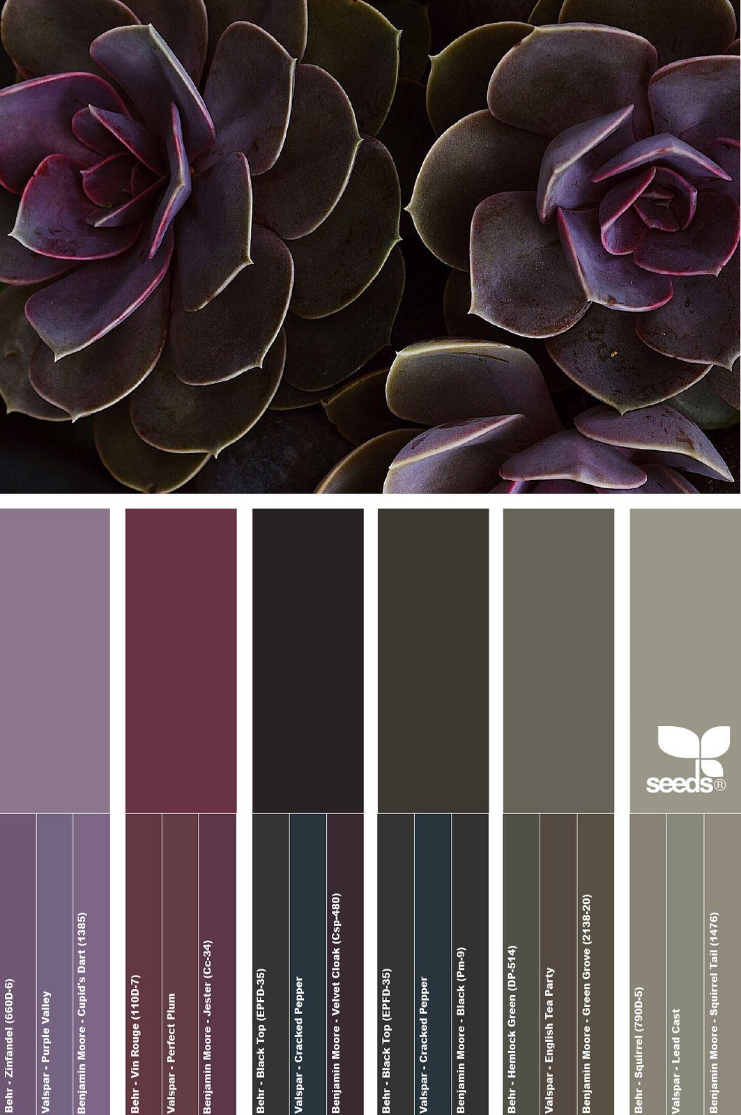 April 22 2016 april 22 color walls and color pallets explore design seeds colour palettes and more nvjuhfo Images