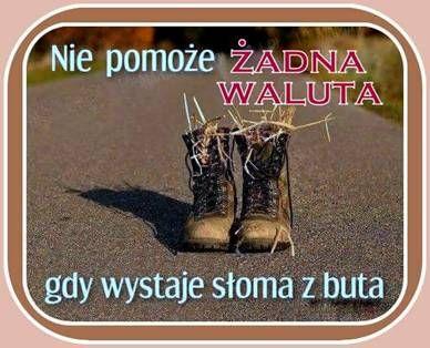 Sloma Z Buta Words Of Wisdom Humor Words