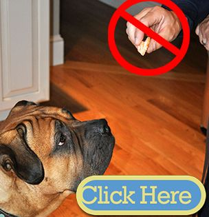 There S Reason To Be Cautious About Chinese Made Chicken Jerky Dog