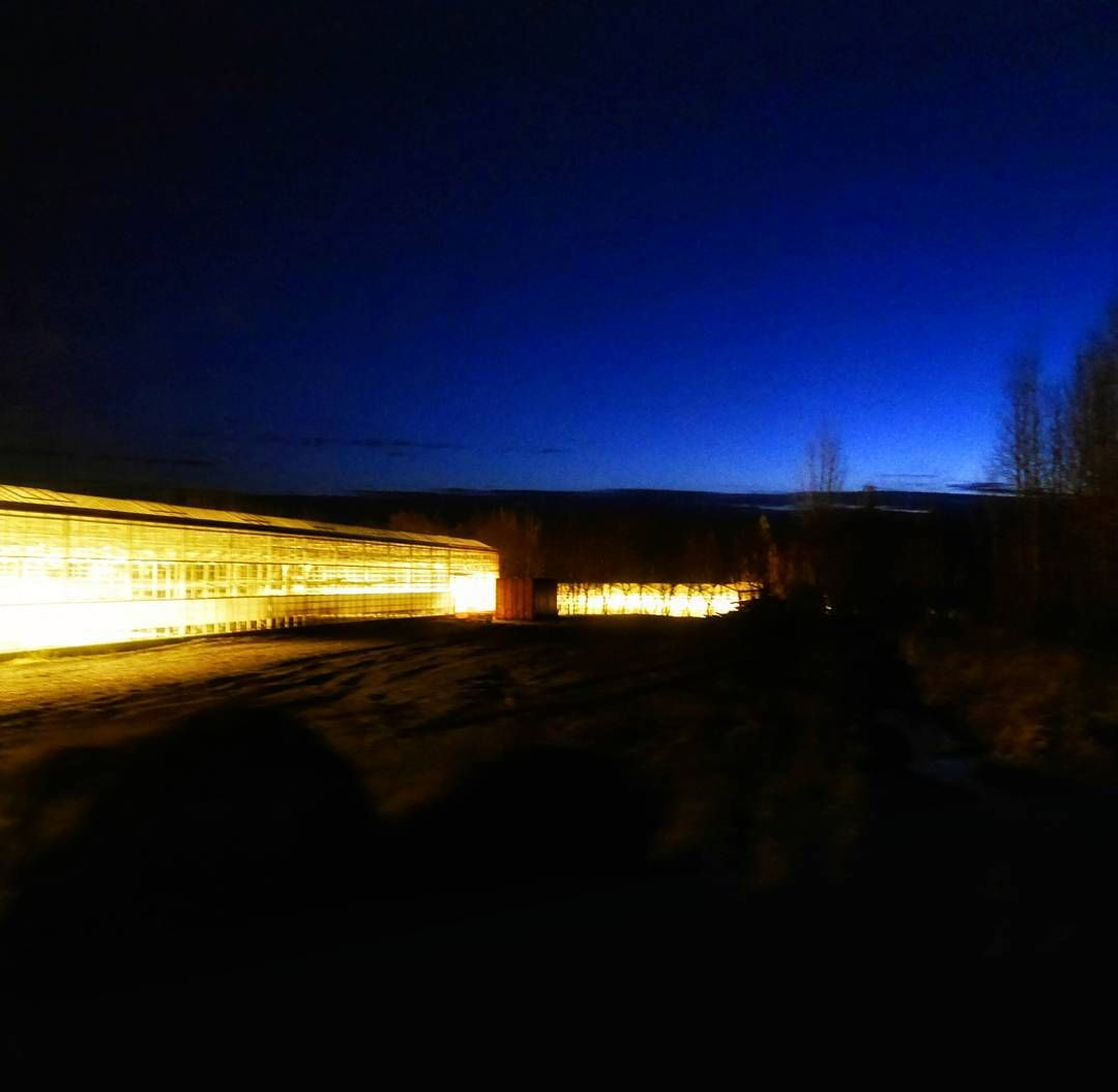 #ArcticGreenhouse. Geothermal magic means year-round greenhouses can grow almost anything.  #iceland #everydayiceland #ig_iceland #greenhouse #night #travelgram #travel #discover #arcticliving