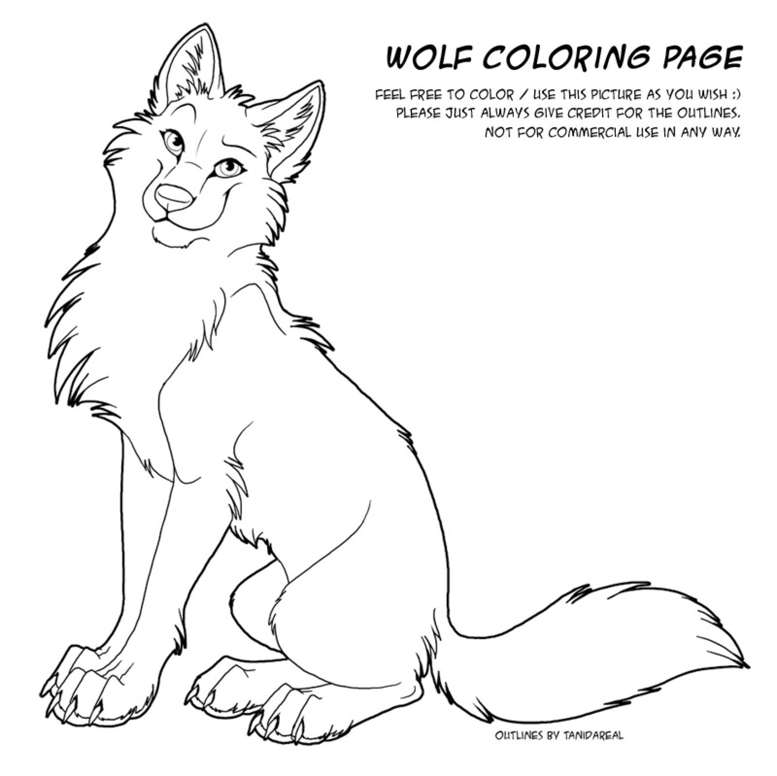 Color Page Wolf By Tanidareal On Deviantart Cute Wolf Drawings