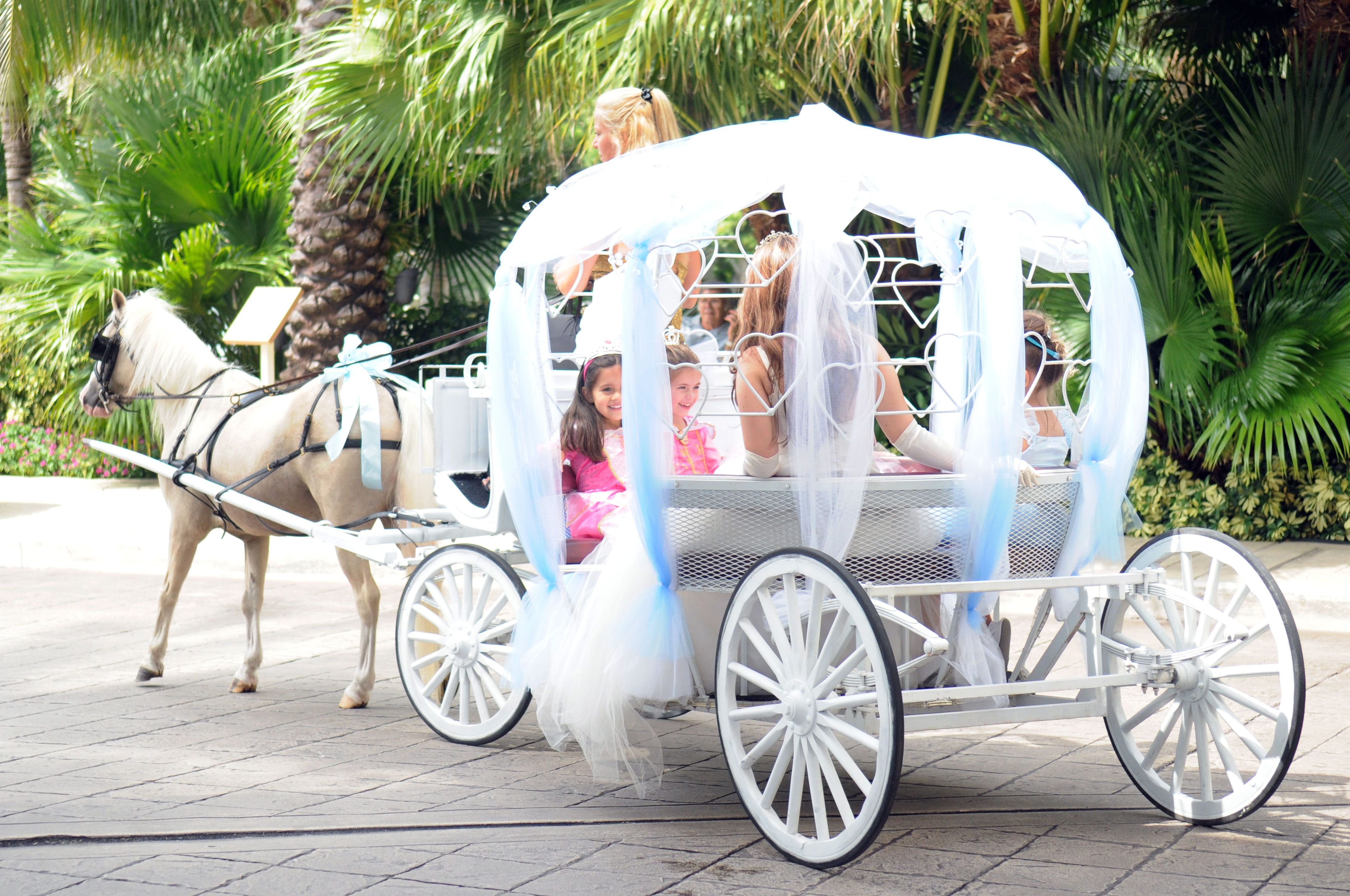 Princess Carriages - Custom Princess Carriage Parties