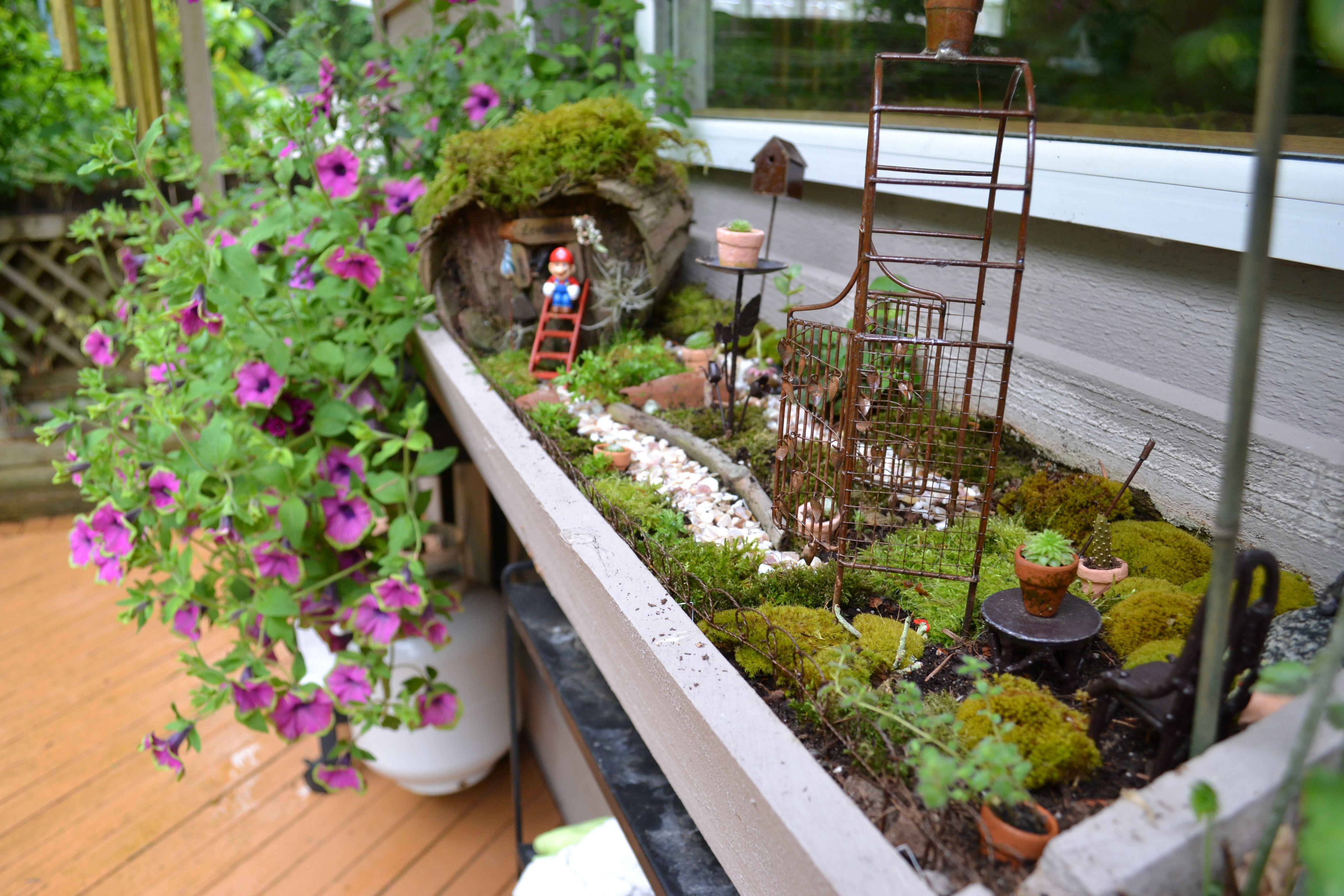 Fairy Garden Box Planter Bo