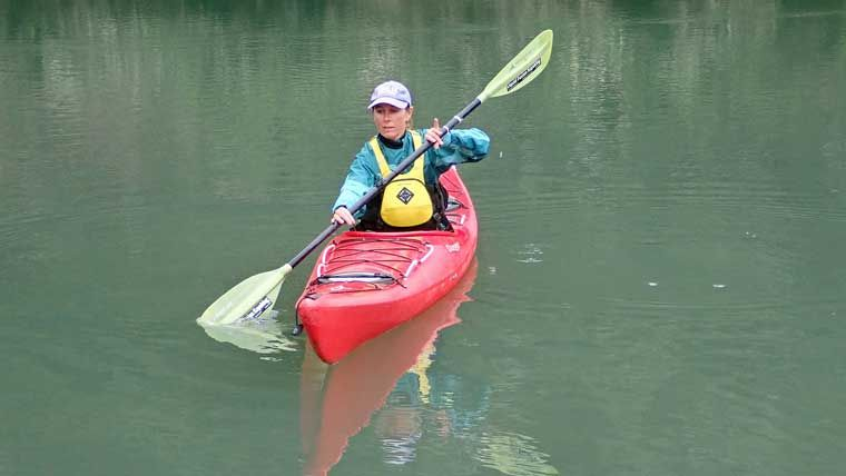 How To Paddle A Kayak A Guide For Beginners Cool Of The Wild In 2020 Kayaking Kayaking Tips Paddle