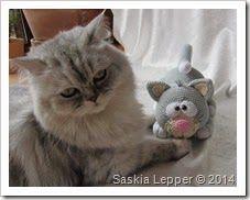 Amigurumi Miezekatze und echte Katze