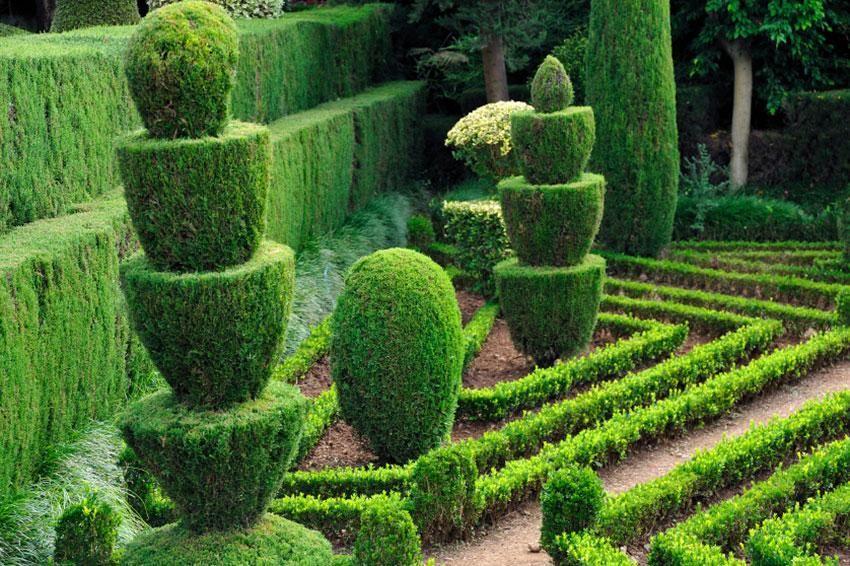 Amazing Topiary Garden Design Ideas Part - 7: Bizarre Topiary Garden