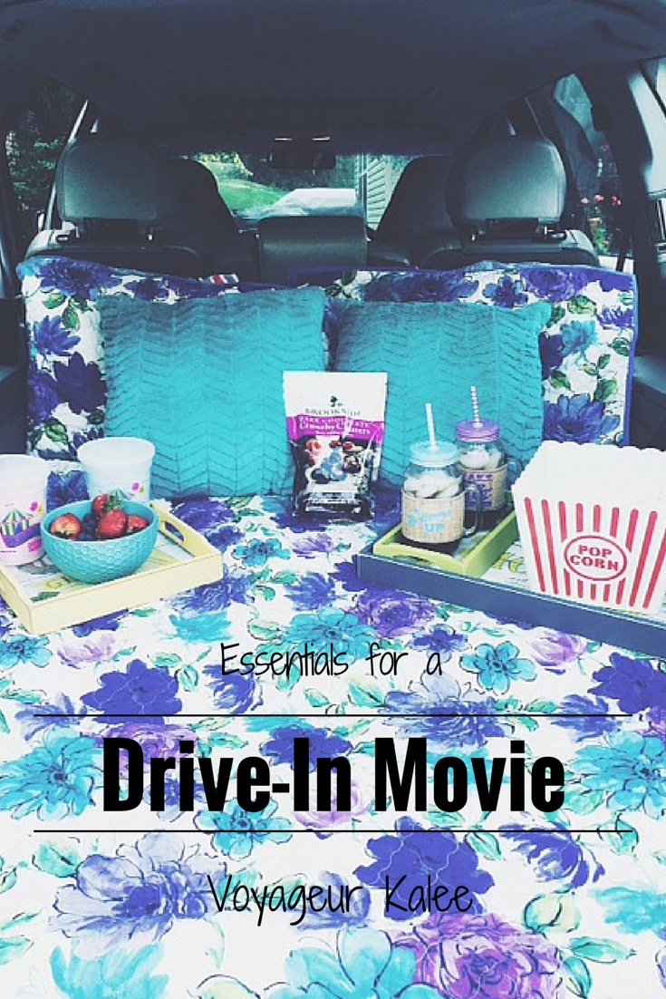Essentials For A Drive In Movie Drive In Movie Summertime Fun Summer Fun