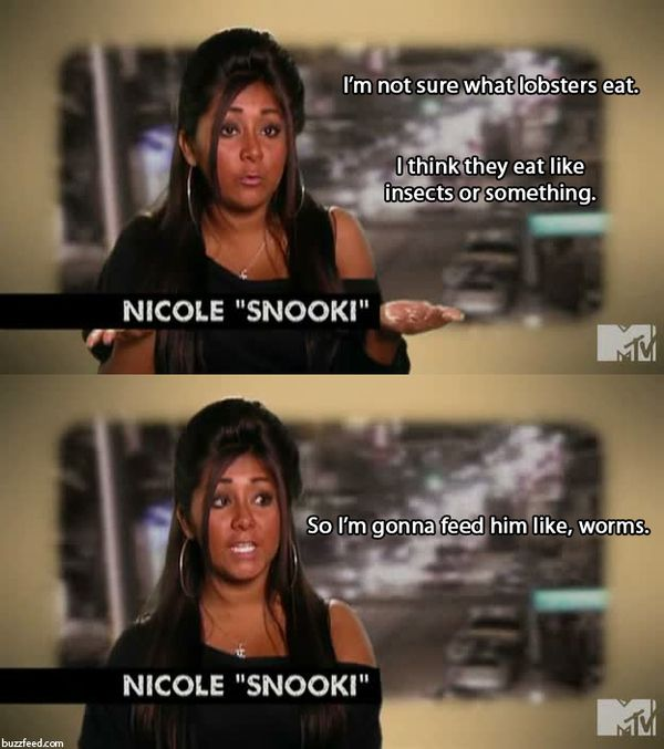 The 30 Best Quotes From Season 2 Of Jersey Shore Snooki