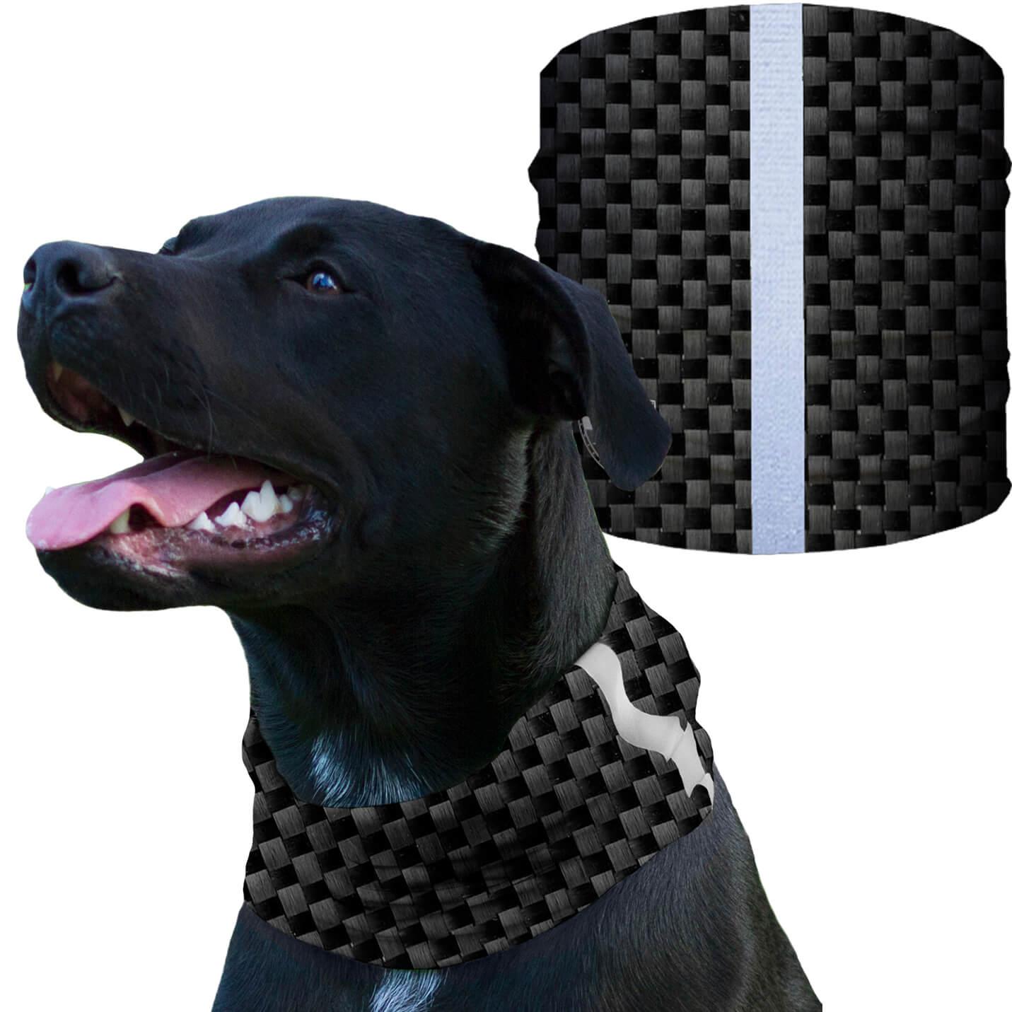 Dog Shields Carbon Fiber Dog Training Dogs Your Dog