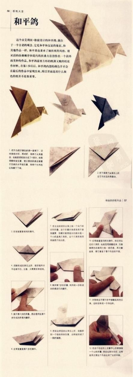 Photo of 20+ Ideas Origami Paso A Paso Pajaro,  #Ideas #Origami #origamibird ,