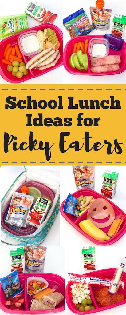 School lunch ideas for picky eaters Quick and easy school lunch ideas for kids