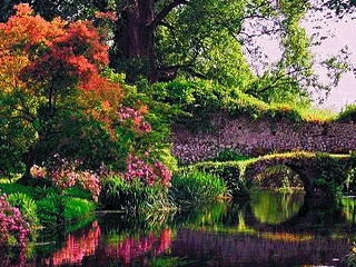 ...........hear-stopping beauty, concept and  design. Ah, the colors, the fragrance....lost, lost, in Ninfa, Roma!