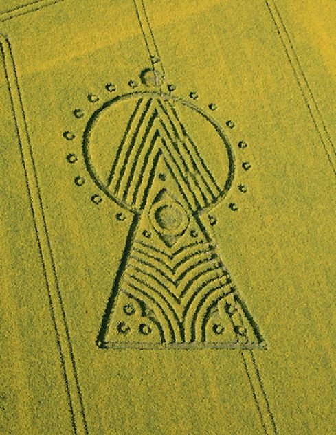 Yarnbury Castle Crop Circle 2010 Agroglifos Crop Circles