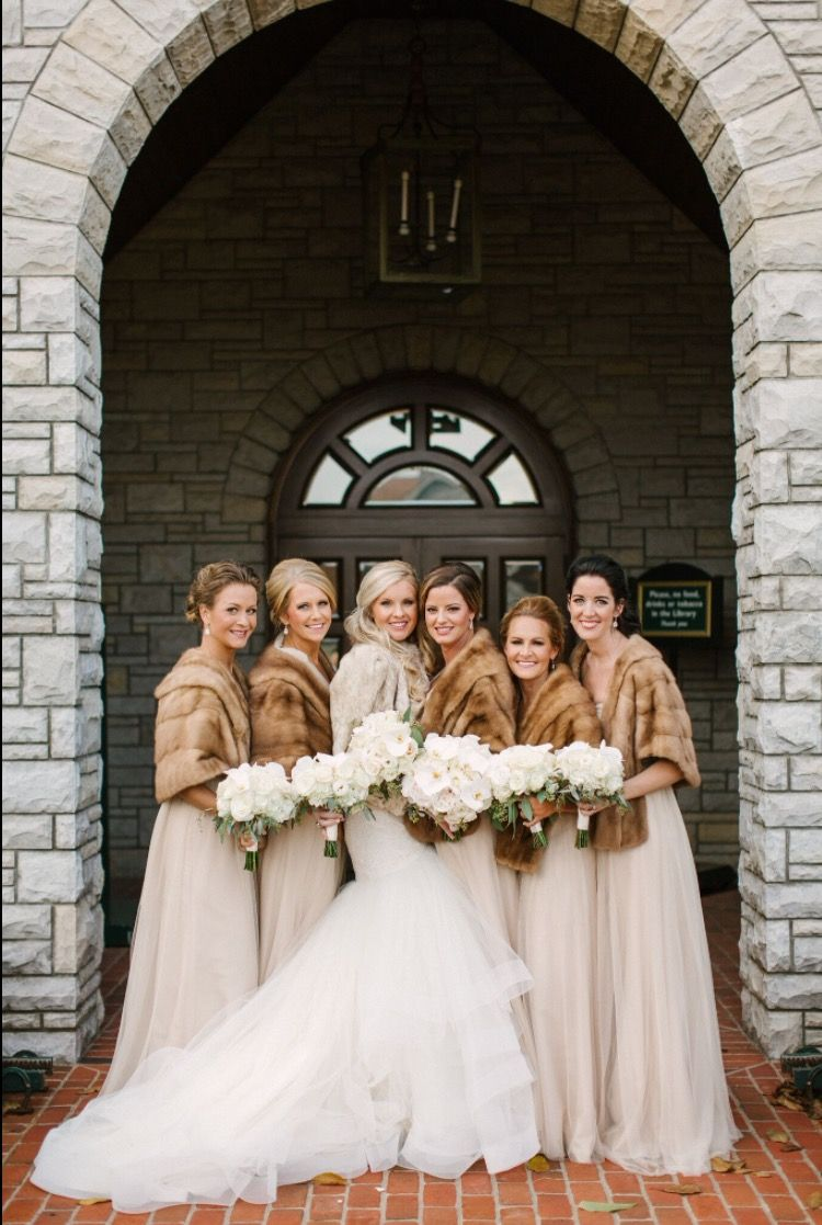Bridesmaid dresses designer jenny yoo from twirl boutique in bridesmaid dresses designer jenny yoo from twirl boutique in lexington ky fur shawls rented ombrellifo Images