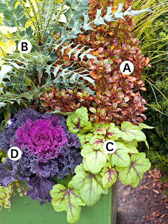 Fall container garden ideas fall containers gardens and landscaping - Potted autumn flowers ...