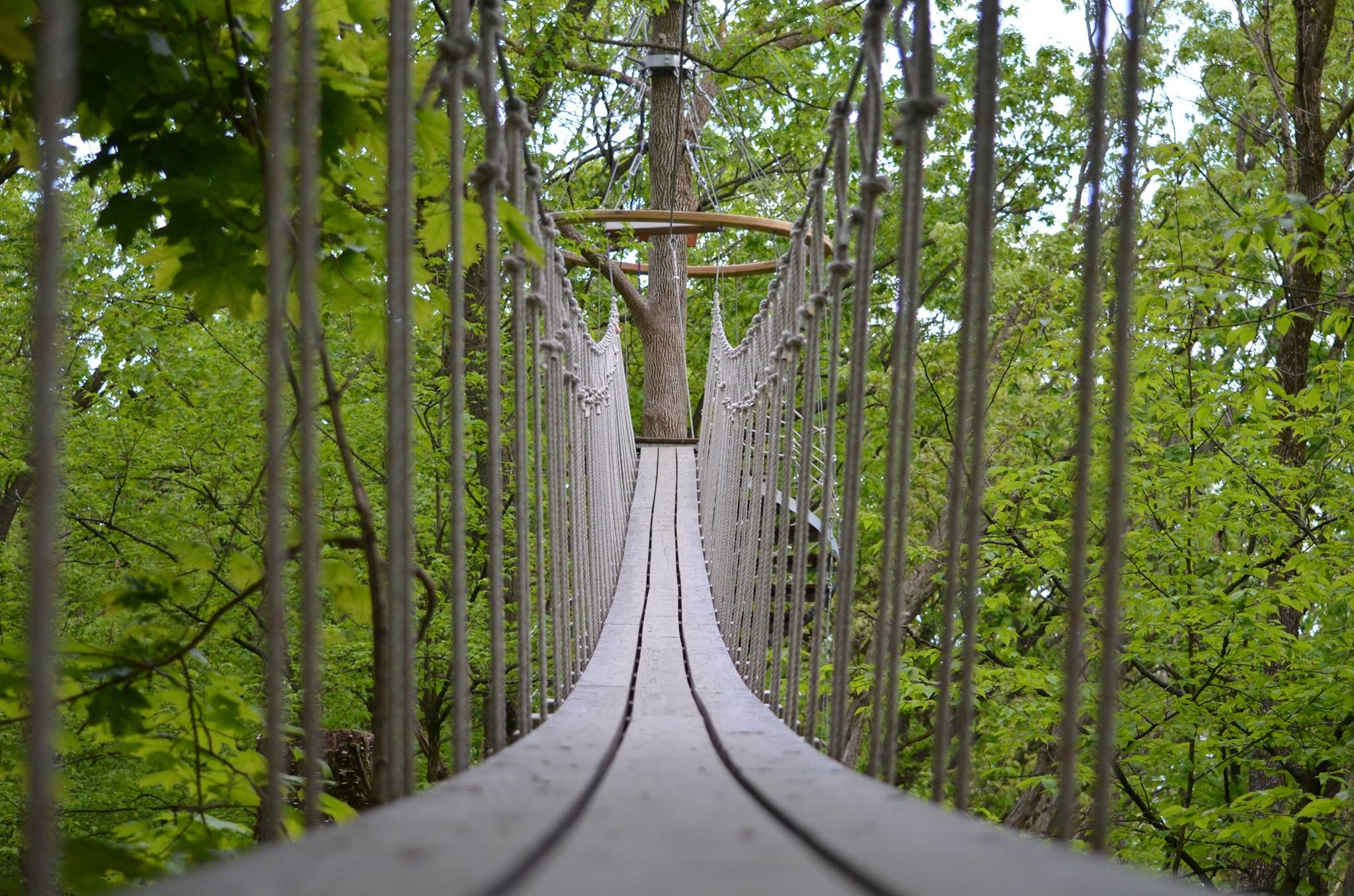 Canopy Walk Lake Geneva WI. Ever wish to walk atop the trees? & This Canopy Walk In Wisconsin Will Make Your Stomach Drop | Lake ...