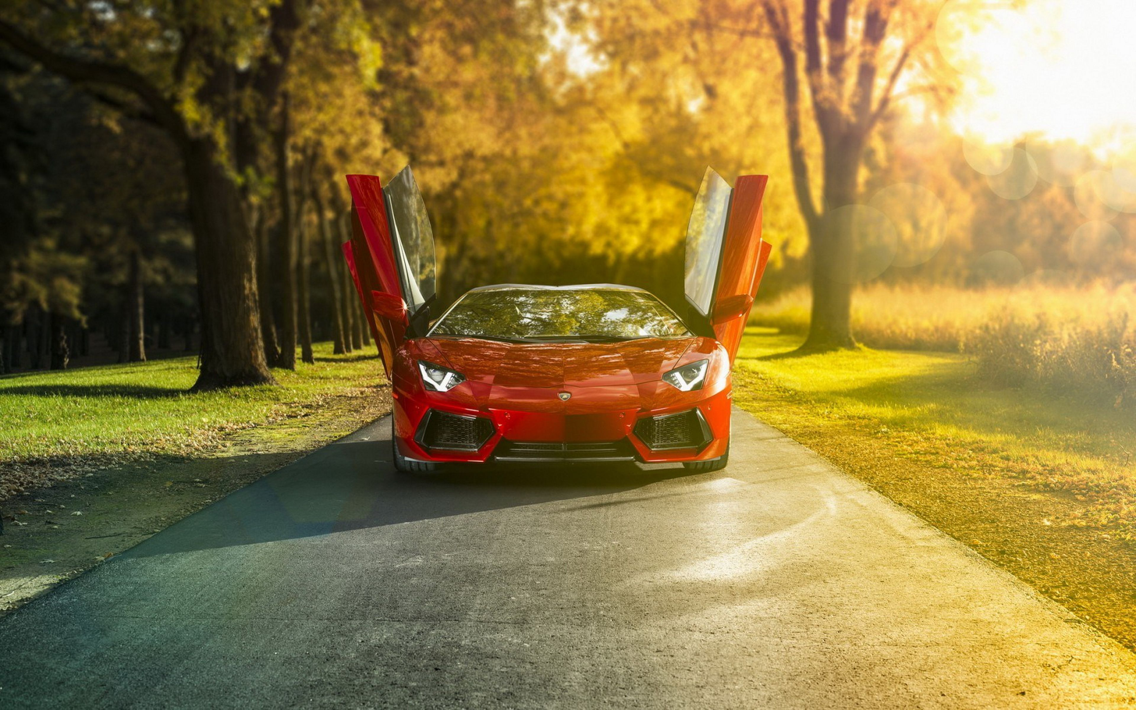 Road Angle Lamborghini Aventador Lp 700 4 Autumn Street Wallpaper