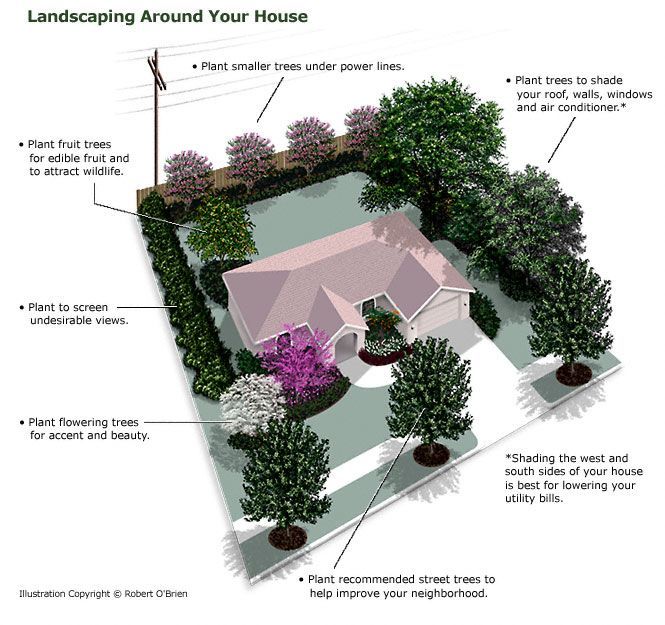 Planting Trees Around Your House Backyard Garden Landscape Small Backyard Gardens Backyard Garden Design