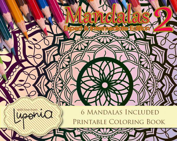 Mandalas Coloring Pages Hard Painting Book Level 2 Etsy Coloring Books Painted Books Printable Coloring Book