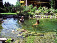 Schwimmteich natural swimming pond
