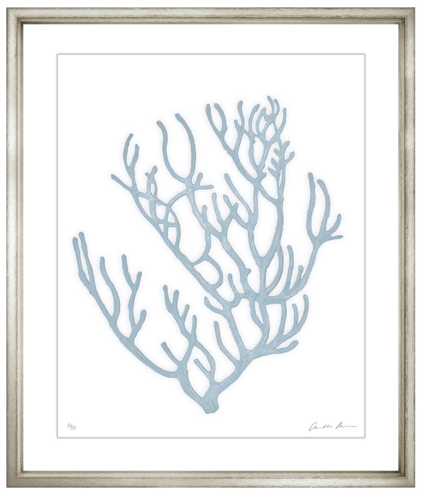 Charlotte morgan blue velvet framed coral wall art iv wall art