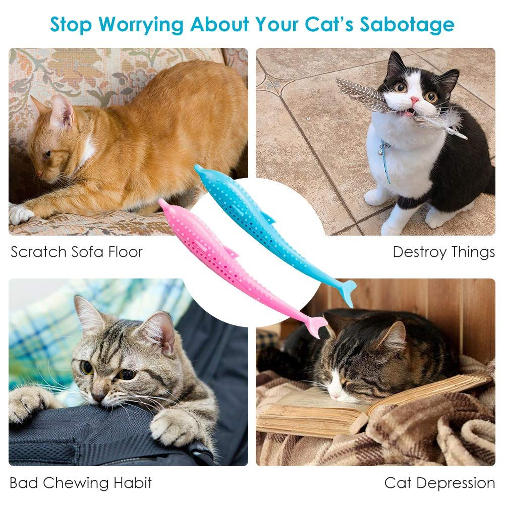Segminismart Toothbrush Silicone Cleaning Interactive In 2020 Cat Toys Catnip Toys Cats And Kittens