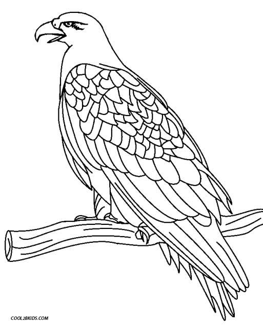 Printable Eagle Coloring Pages For Kids Cool2bKids Birds - new eagles to coloring pages