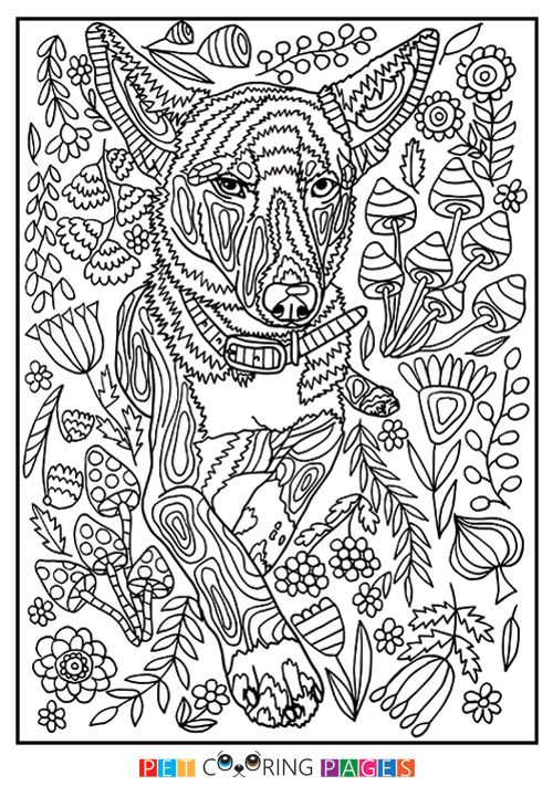 Free Printable Mutt Coloring Page Available For Download Simple And Detailed Versions For Adults And Kids Malvorlagen Ausmalen Ausmalbilder