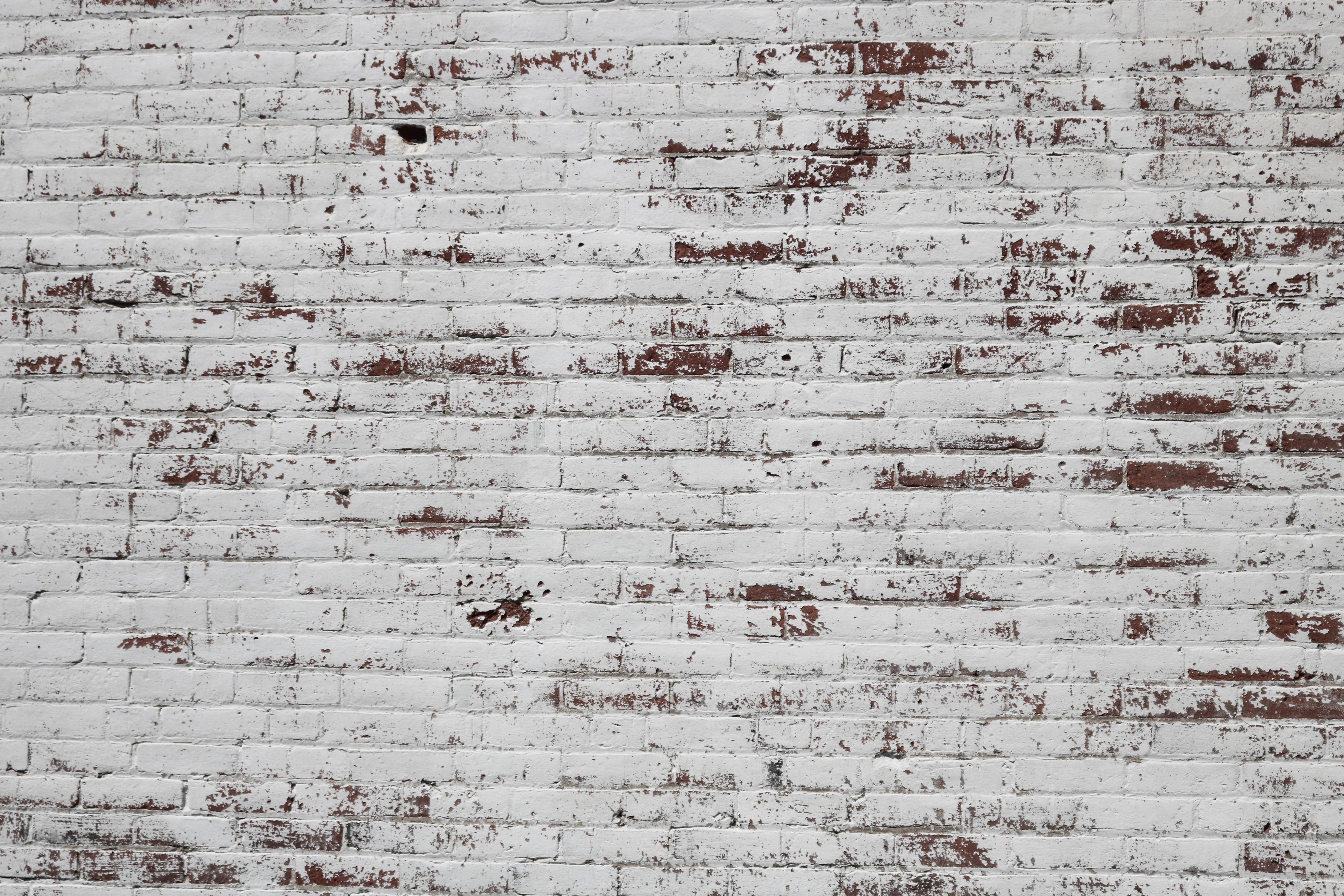 Wall Brick White And Painted Hd Photo By Sydney Zentz Srz On Unsplash Painted Brick Walls Painted Brick Brick Wall Wallpaper