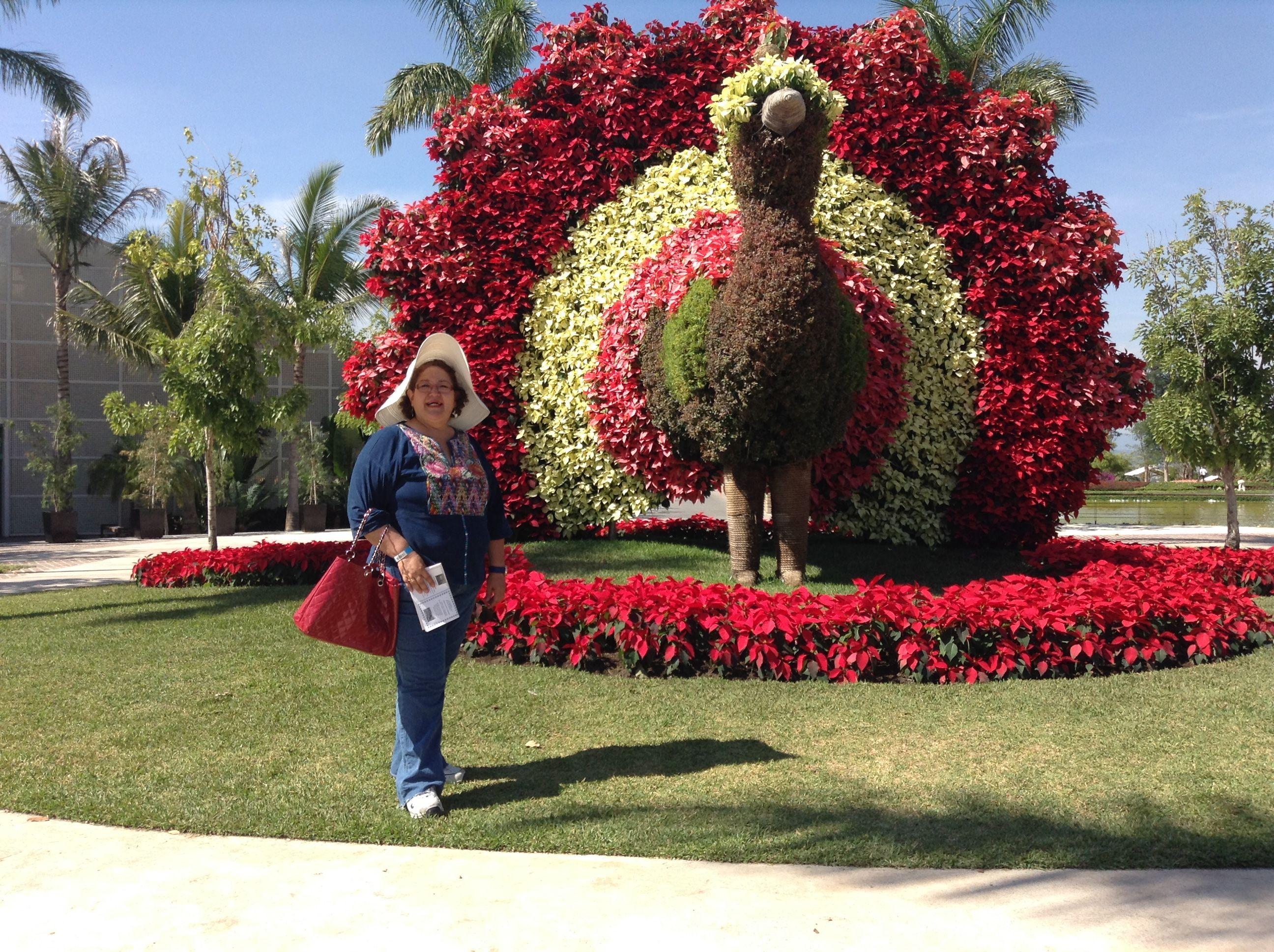 Recorrer los jardines mas bellos del mundo jardines de for Los jardines de lola