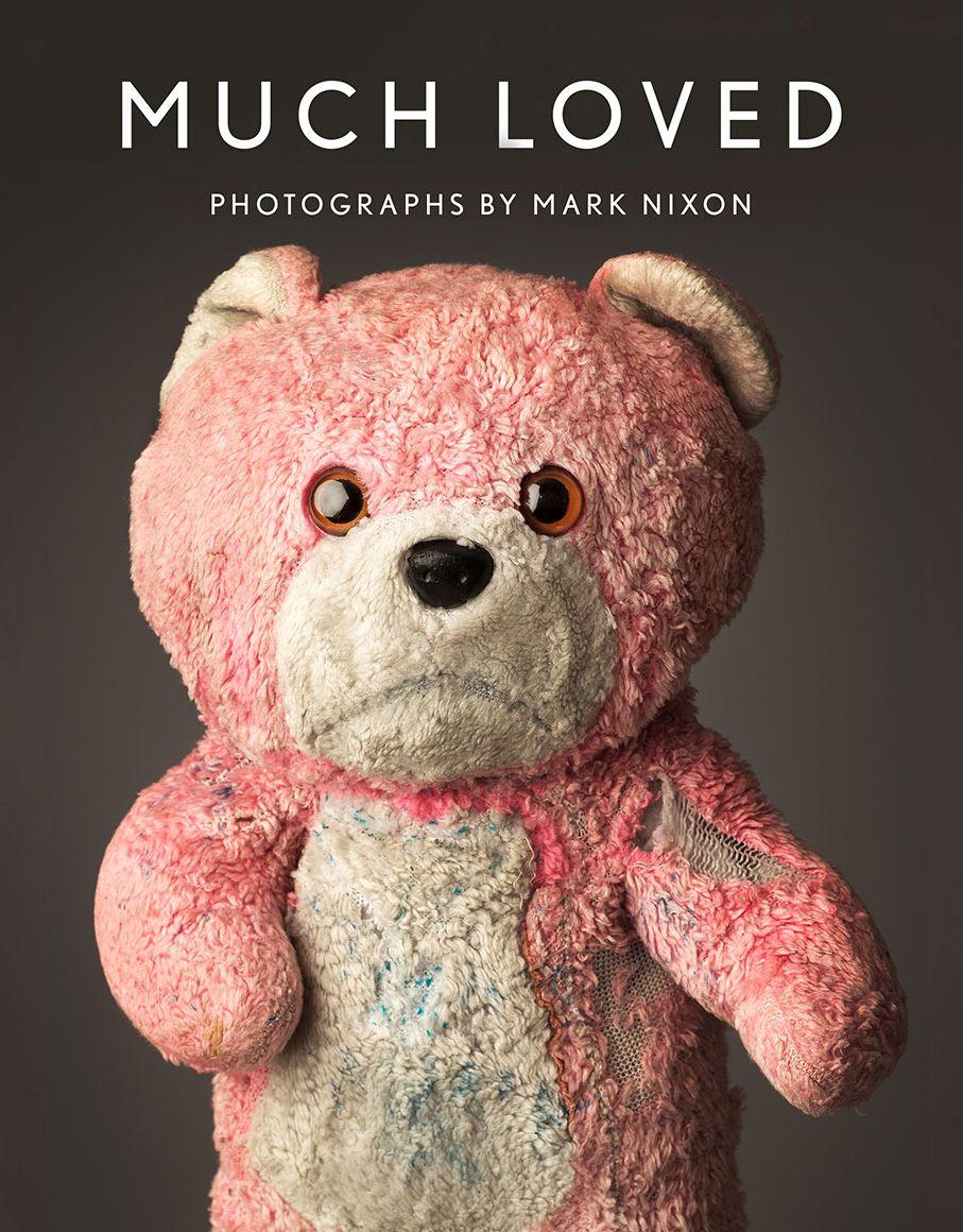Pin By Kate On Pop Tarts Fun To Be One Nixon Teddy Bear