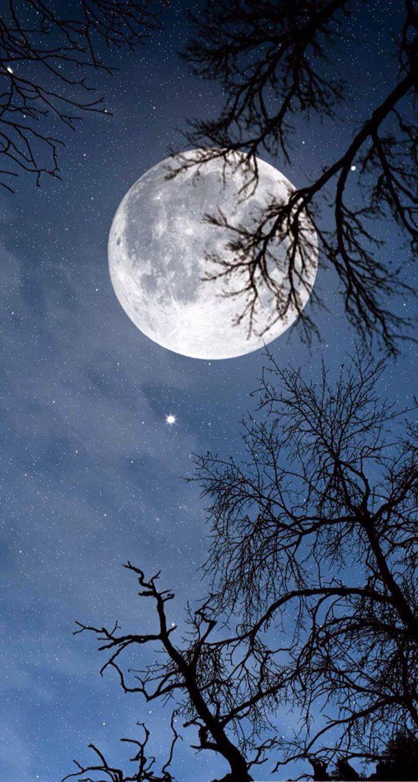 Pin by Joanna Bateman on Art Inspiration Night sky