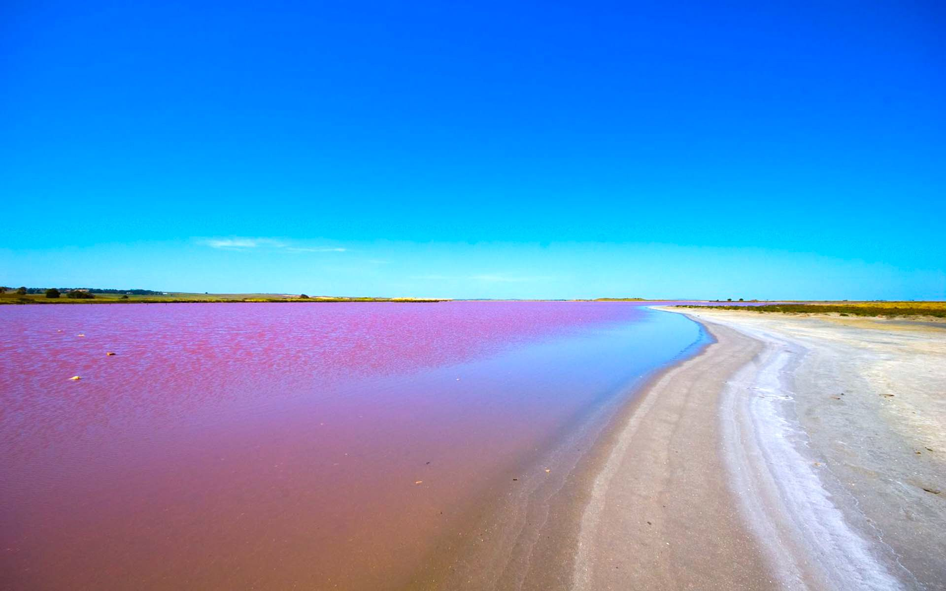 Image result for Lake Retba, Senegal