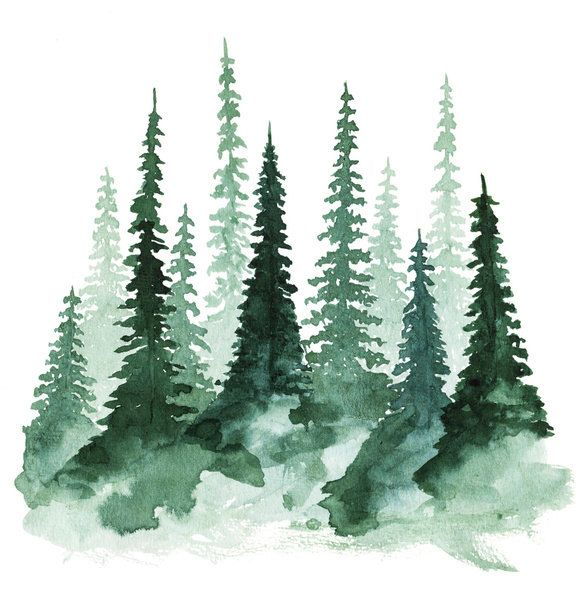 Woodland Trees 1 Art Print 5 X 5 Watercolor Artwork Tree Art Watercolor Trees