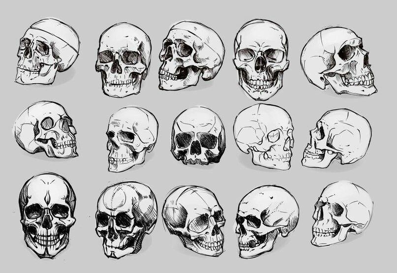 Skulls. Helpful tutotial. | 두개골, 그림, 만화 그림