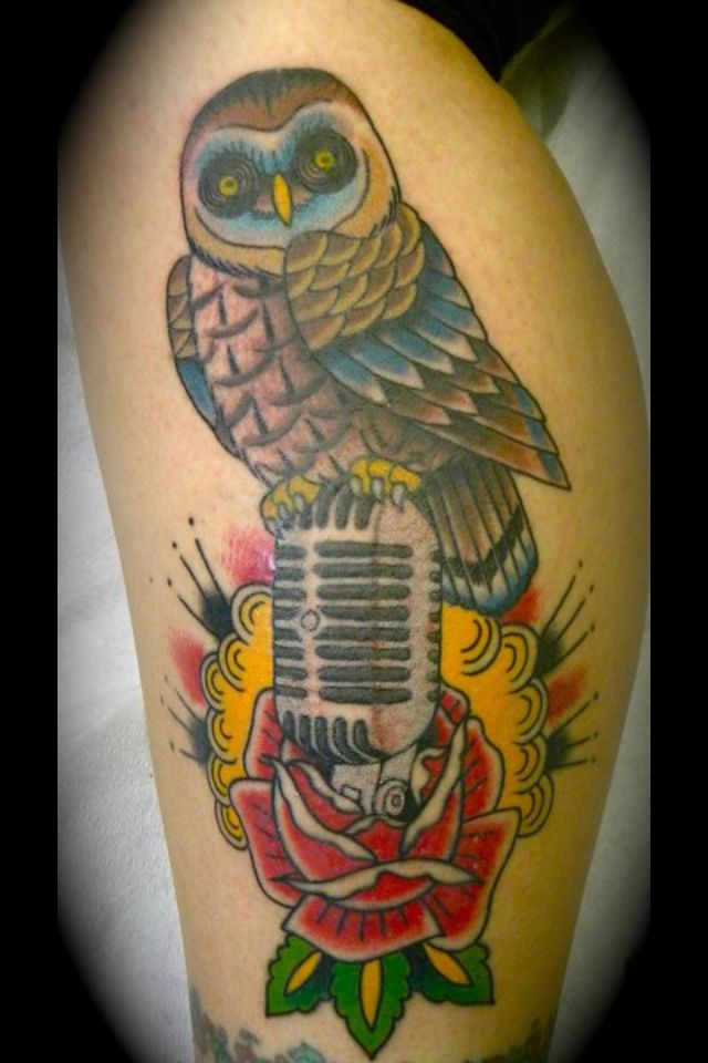 Traditional American owl