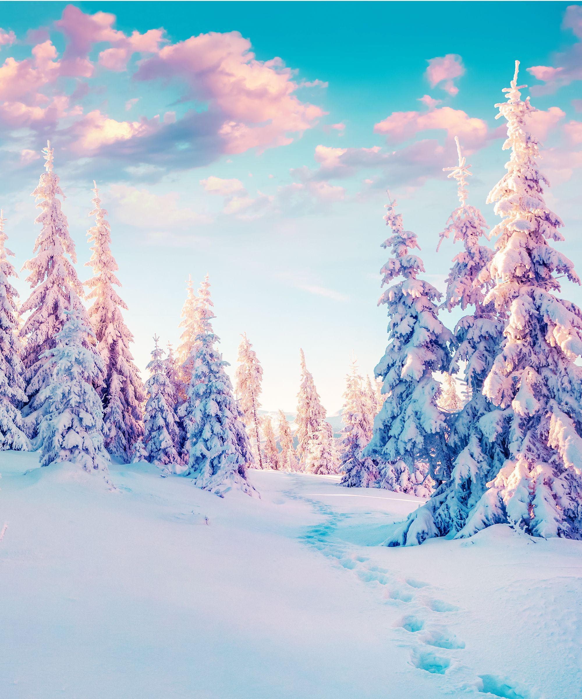 After A Year Like This You Need To Celebrate The Winter Solstice Winter Wallpaper Winter Pictures Pretty Backgrounds